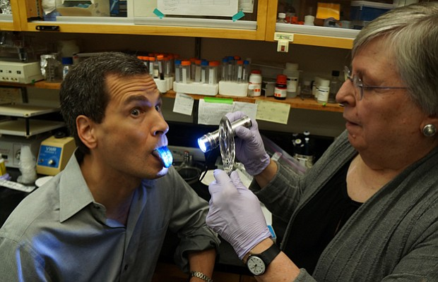 Taste expert Linda Bartoshuk examines David Pogue's tongue, counting the numb...