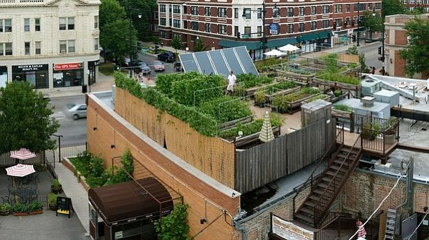 Uncommon Ground, a certified green restaurant in Chicago, hosts an organic fa...