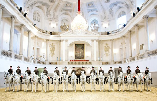 Riders at the Spanish Riding School, Vienna, Austria. Hear the story of the world-famous Lipizzaner stallions, from their origins in ancient times to the almost unknown drama of their rescue in 1945.