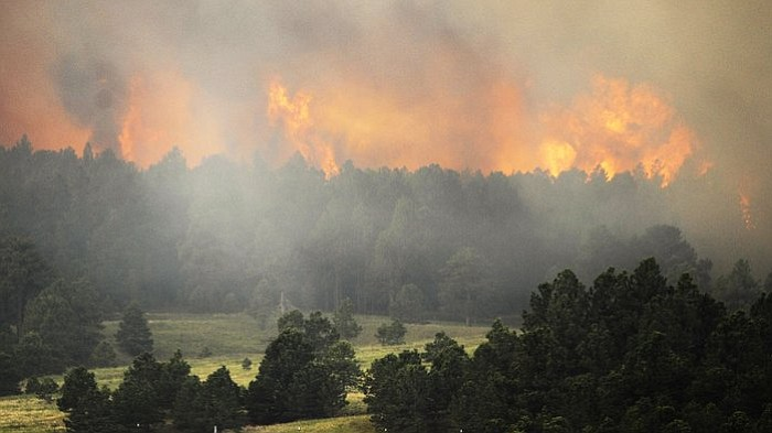 The Black Forest wildfire is burning near Colorado Springs, Colo. As Thursday...