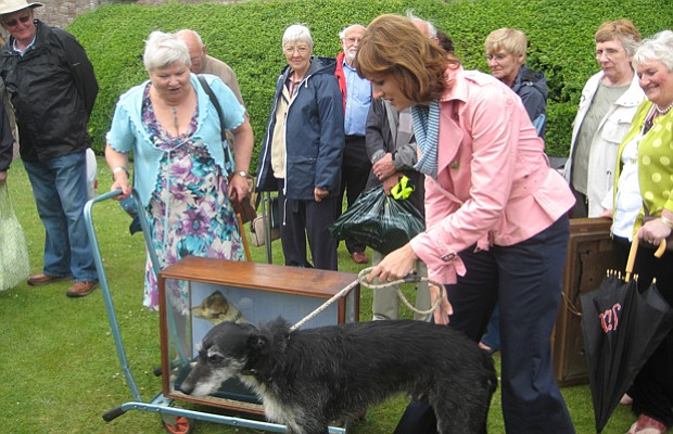 Fiona Bruce with her dog meets a stuffed fox terrier.