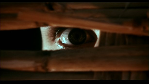"An iconic image from the Italian giallo ""A Bay of Blood"" from Marion Bava. Th..."