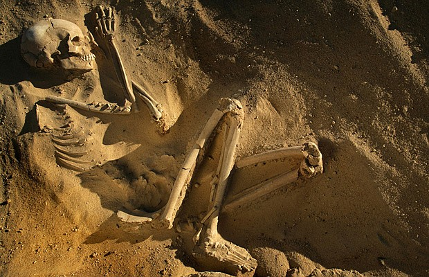 A Tenerian skeleton unearthed in the Sahara Desert.