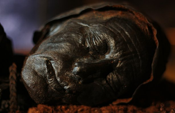 Tollund Man, an Iron Age bog body, found in 1950 in a peat bog on the Jutland Peninsula in Denmark. The man's physical features were so well-preserved that he was mistaken at the time of discovery for a recent murder victim.