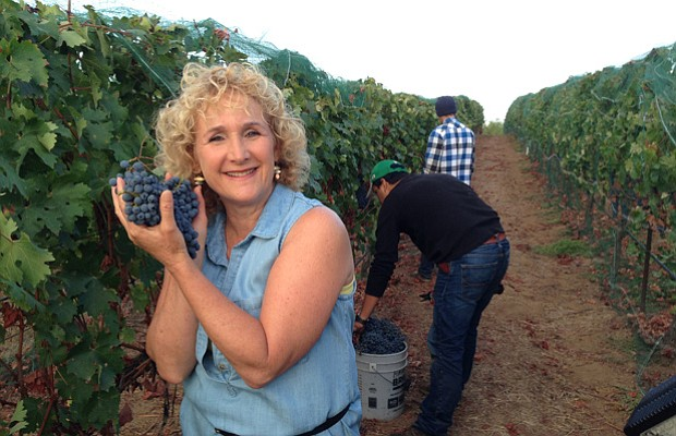 Host Nan Sterman visits a vineyard for the grape harvest.