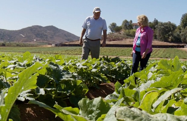 Host Nan Sterman visits Be Wise Ranch, the original organic CSA that grows an...