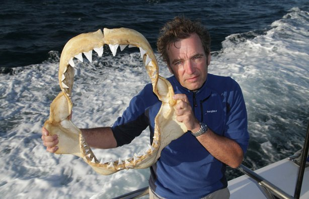 Mark Evans holds a great white shark jaw.