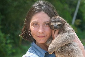 NATURE: A Sloth Named Velcro
