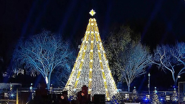 Marvelous National Christmas Tree Lighting 2015 Amazing Pictures