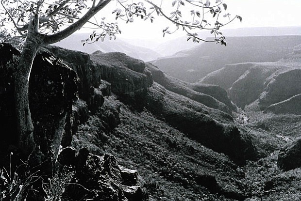 View of the west looking down the arroyo of Rancho del Potrero, 1980. Two ran...