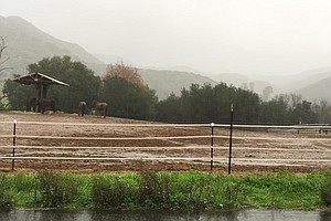First In A Series Of Pacific Storms Hits San Diego
