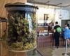 Supervisors Ban All Marijuana Businesses In Unincorporated San Dieg...