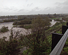 Bipartisan Bill Aims To Rehabilitate Tijuana River Valley After Sew...