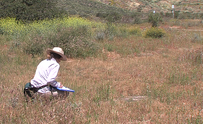 Brenda Bennett examines plant life in and around a vernal pool in San Diego's...