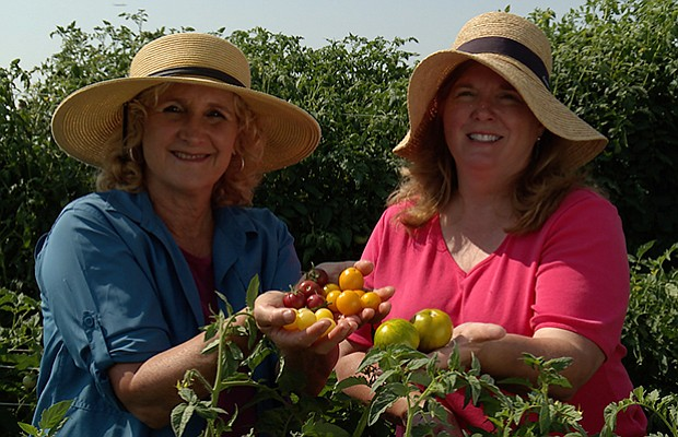 Host Nan Sterman and Patti Buskirk, owner/breeder of Seeds by Design, compare...