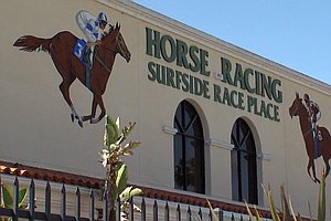 On Third Day Of Racing Two Horses Die, Third Injured At D...