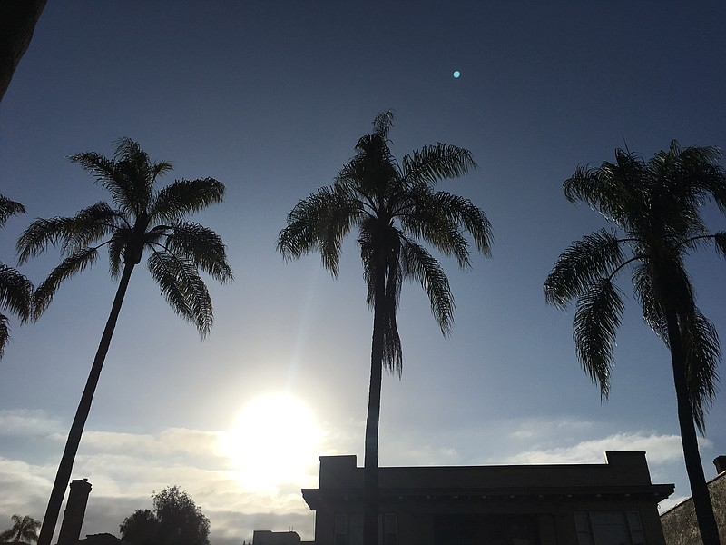 The sun shining through palm trees in San Diego in this undated photo.