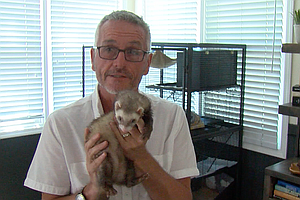 La Mesa Could Become A Sanctuary City — For Ferrets
