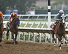 Del Mar Races See New Costs And Declining Revenues