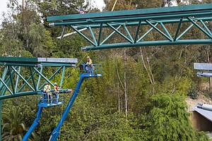 New Bridge Connects East, West Areas Of San Diego Zoo