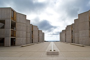 Famous Salk Institute Cancer Researcher Suspended Amid In...