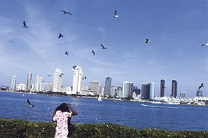 San Diego Studies How To Improve Immigrant Outreach