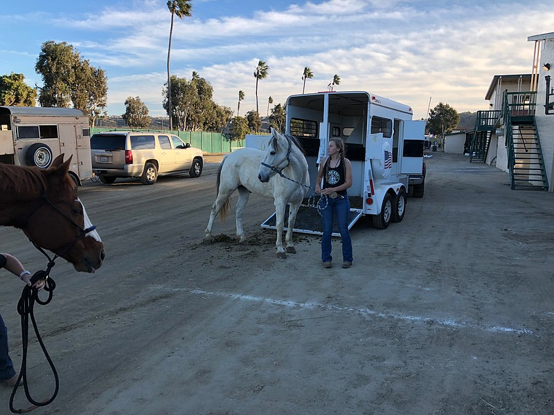 A horse is loaded into a trailer at the Del Mar Fairgrounds, Dec. 7, 2017.