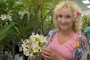 A GROWING PASSION: Intoxicating Plumeria