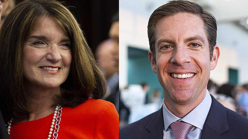 Republican Diane Harkey and Democrat Mike Levin are competing for the 49th Co...