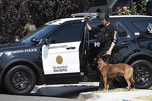 San Diego Police Misconduct, Use Of Force Records Can Now...
