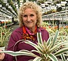 A GROWING PASSION: The Beautiful Bromeliad (New Season Pr...