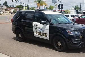 Newly Released Internal Report Details La Mesa Police Dea...
