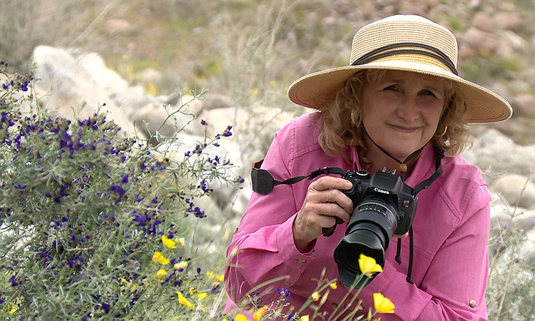 Come along with Host Nan Sterman (pictured) on an armchair tour of Southern C...