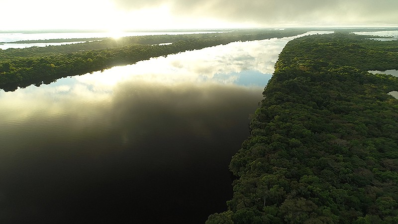 Sunrise over a black water river in the Amazon, the dark acidic water acts li...