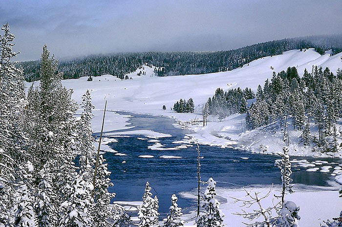 Winter in Yellowstone, Wyo. You can see some steam near the river resulting f...