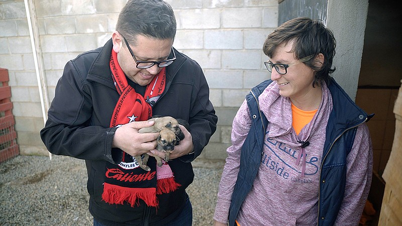 Host Jorge Meraz (left) holds the puppies at Los Adoptables dog shelter in En...