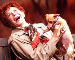 Photo of actress Marion Ross holding a dog. Ross stars in...