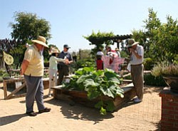 Photo of people looking at the vegetable garden exhibit. ...