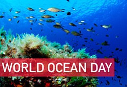 World Oceans Day graphic.