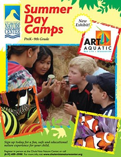 Promotional graphic for 2011 Summer Day Camps at Chula Vi...