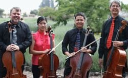Promotional photo of the Cello Quartet Quattrocelli!.