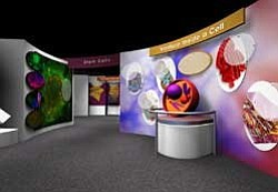 "Promotional photo from the ""Cellular Journey"" exhibition that features a series of interactive exhibits designed to introduce you to human cell biology, the importance of stem cells and the potential impact of stem cells on medical research in the fields of regenerative and personalized medicine at the Reuben H. Fleet Science Center."
