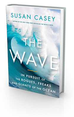 "Book cover for ""The Wave: In Pursuit of the Rogues, Freak..."