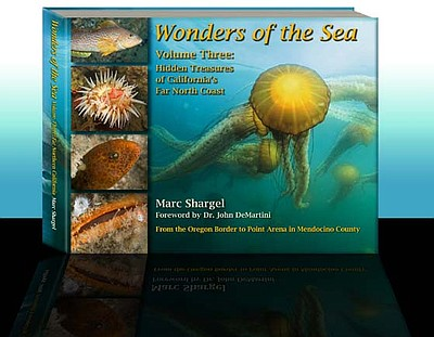 "Graphic cover for ""Wonders of the Sea Volume Three: Hidden Treasures of California's Far North Coast,"" by award-winning author and photographer Marc Shargel."
