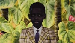 Graphic of Ruud Van Empel's work being featured at MOPA. Courtesy of Ruud Van Empel.