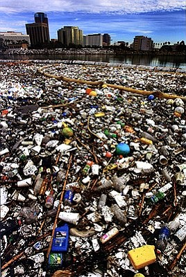 Image representing the Plastic Seas Documentary, who will...