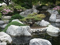 Promotional image of Japanese Friendship Garden.
