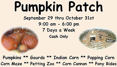 Promotional graphic for the pumpkin patch and more at Mou...