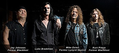 Image of Monsters of Southern Rock band members.