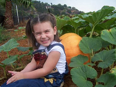 Promotional photo of a young guest enjoying Pumpkin Stati...